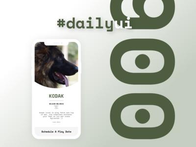 Daily UI 006   Profile