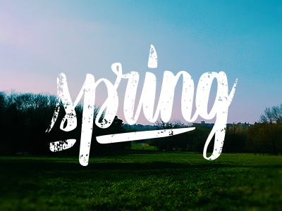 Welcome! spring typography handmadefont lettering