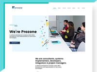 Prozone web design