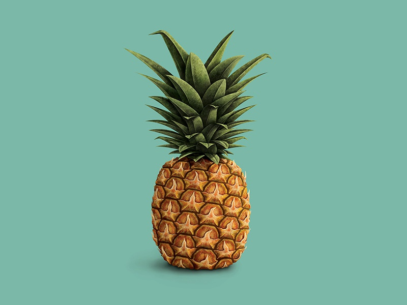 from our families to yours illustration pineapple ashley webelhuth