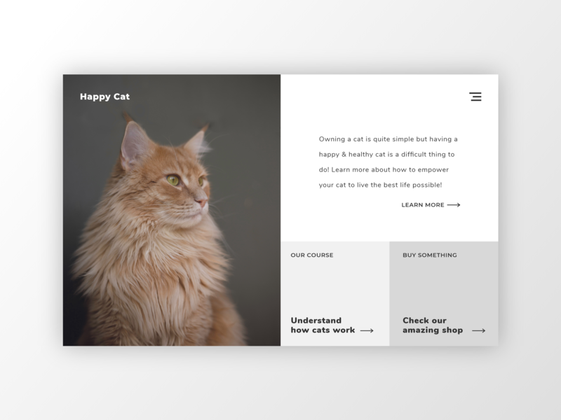 Happy cat! daily ui design ux ui