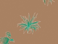 plant daze