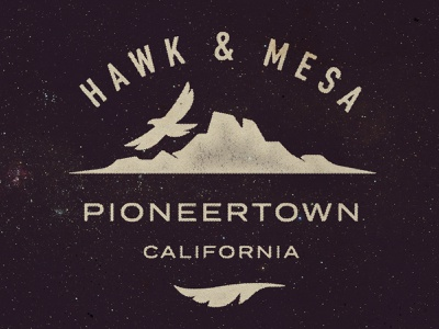 Hawk&Mesa landscape badge desert park feather outdoors logo california mountain hawk