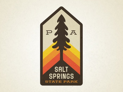 Salt Springs park pennsylvania badge patch