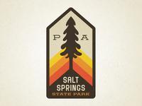 Salt Springs
