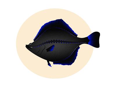 Starry Flounder vibrant gradients vector flounder fish animal art affinity designer animal illustration