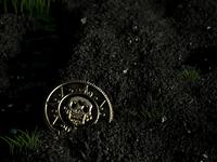 Coin Skull