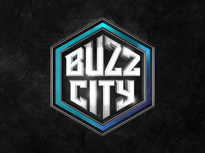 Buzz City hornets charlotte buzz city