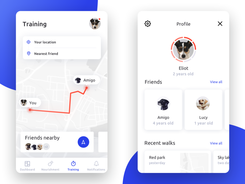 Fitness Activity Tracker for Dogs #2 🐕🏃🏻♂️🏃🏻♀️ modern clean walking tracker runners run mobile minimal ios interface fitness dogs dog distance navigation profile app activity