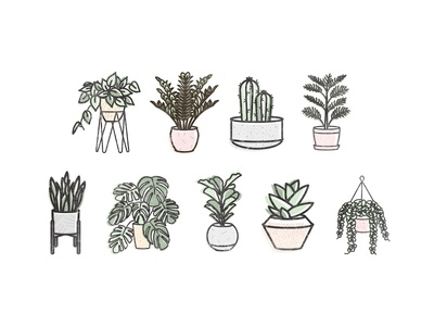 Plant Icons plant stand green devils ivy snake plant freelance decor succulents pastel mid century modern cacti plants vector illustration icons