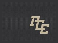 ACE sports apparel logo