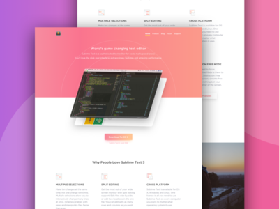Sublime Text Website Interface