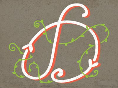 D - Typography design type typography d letter monogram pattern vintage drop cap