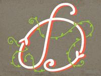 D - Typography
