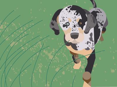 Louisiana Series - Catahoula Cur texture design illustration mid century modern catahoula cur dog