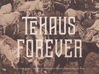Tehaus Forever