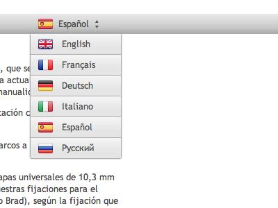 Language Selection (Stripe Flags)