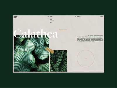 Plant Box Experimental No.1 green plant homepage ui web design clean minimal interaction website landing page layout vietnam