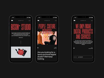 Bison Studio / Responsive grid phone ui design clean web design website type typography layout minimal adaptie responsive app mobile vietnam