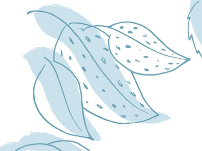 Leaves illustration leaves
