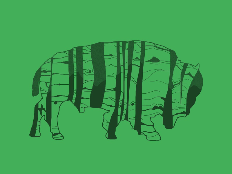 Buffalo buffalo aspens adobe photoshop nature design art