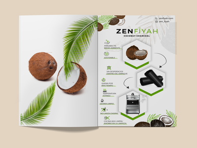 Infographic Design flyers flyer design flyer brochure infographic design infographics infographic