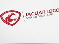 Jaguar (Company name hidden due to NDA)