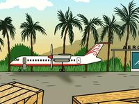 The Remote Island Plane