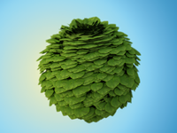 Ball of leaves