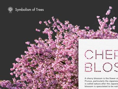 Symbolism of Trees website trees web design ui