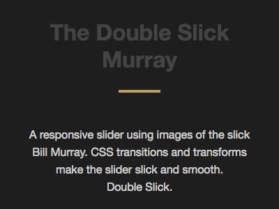 The Double Slick Murray ui web design carousel slider