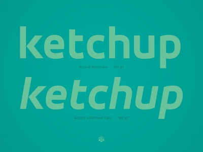 Accord Alternate Italic typeface type design sone soneritype font letter character glyph web