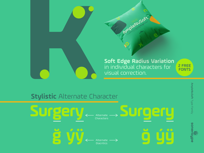 AmpleNuSoft - A display type family letter glyph character soneritype font type design typeface