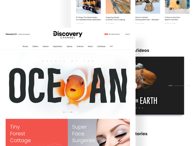 Discovery channel website design concept branding agency interface ux uiux ui white branding creative landing page typogaphy 2020 trend dribbble best shot homepage creative design graphic design web concept design minimal clean