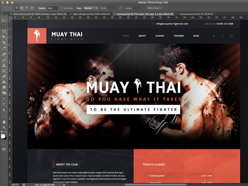Muay Thai muay thai kickboxing boxing gym sport fighters mms