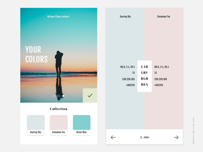 WhatTheColor! the what color app