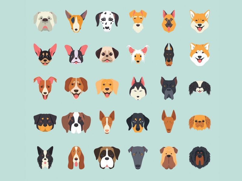30 Dog Breeds Vector Illustration Icons