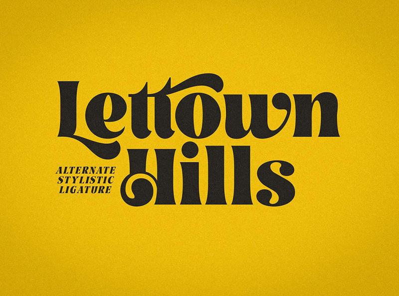 Lettown Hills Script Font By Graphic Pear On Dribbble