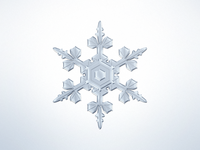 Snowflake rebound challenge