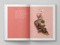 WIP Brochure design