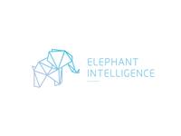 Elephant Intelligence