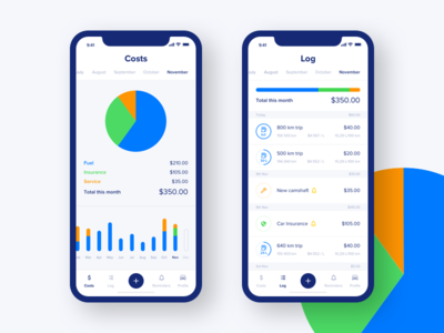 Fuel costs iOS app dashboard chart clean ux ui ios mobile application costs fuel
