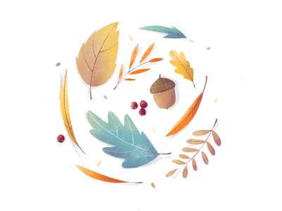 Autumn Vibes illustration birch willow oak acorn rowan procreate fall autumn texture branch leaf