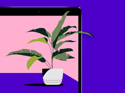 Digital Beauty юхтенко майк maicle yukhtenko mike illustration clear colorful ipad herb plant flower