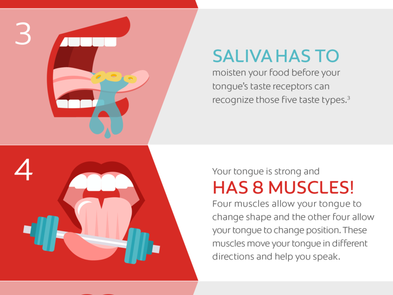 Part of an infographic for Colgate colgate teeth saliva mouth icons illustration infographic tongue