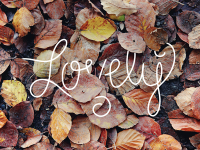 This time of year is...  lovely fall custom type hand lettering illustration photography