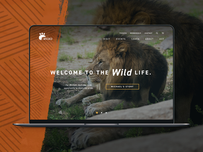 Zoo Website web wild wildlife safari interactive website zoo