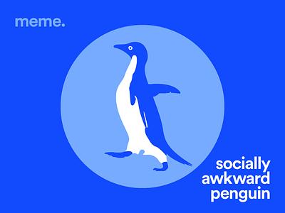 Socially Awkward Penguin advice animal awkward blue penguin meme