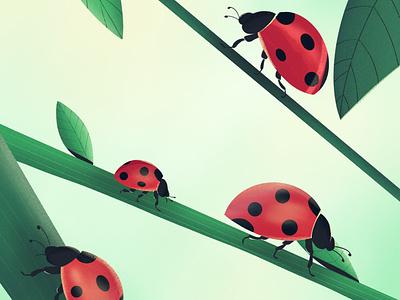 Ladybugs environment insects plants lukky ladybug nature graphic design procreate design illustration ladybugs