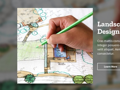 Landscaping Contractor Website UI website ui landscaping